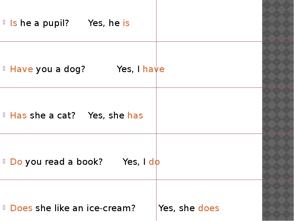 Is he a pupil? Yes, he is Have you a dog? Yes, I have Has she a cat?...