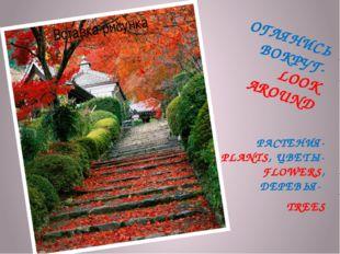 ОГЛЯНИСЬ ВОКРУГ- LOOK AROUND РАСТЕНИЯ- PLANTS, ЦВЕТЫ- FLOWERS, ДЕРЕВЬЯ- TREES