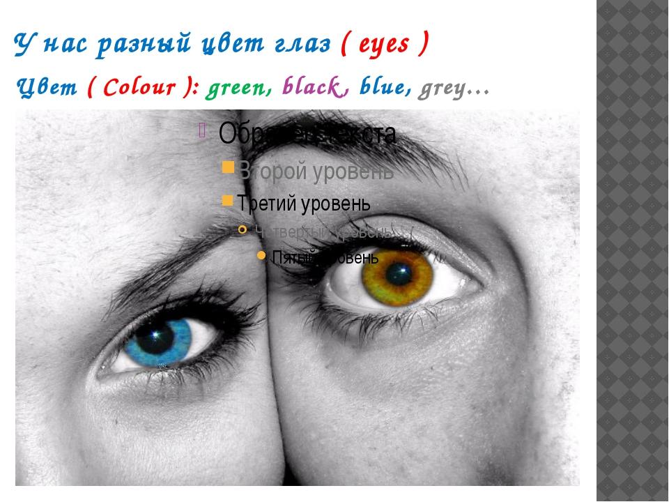 У нас разный цвет глаз ( eyes ) Цвет ( Colour ): green, black, blue, grey…