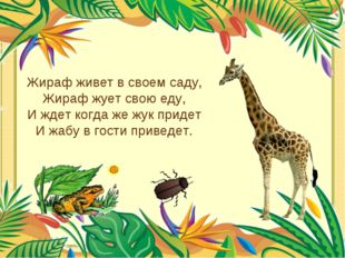 Жираф живет в своем саду, Жираф жует свою еду, И ждет когда же жук придет И ж
