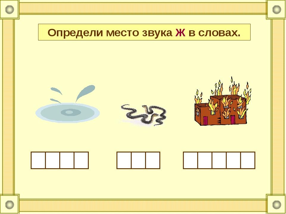 Определи место звука Ж в словах.