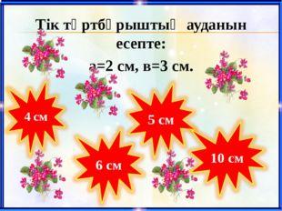 Тік төртбұрыштың ауданын есепте: а=2 cм, в=3 cм.