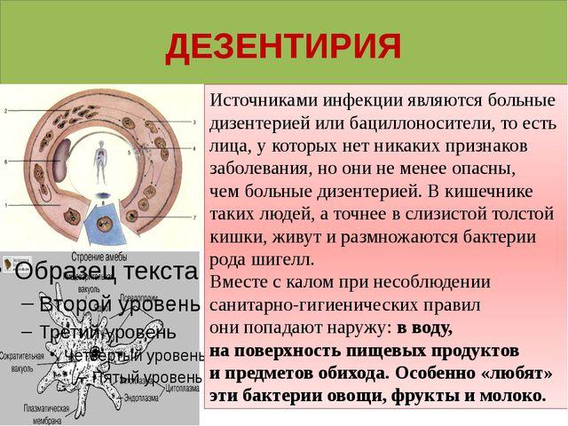ДЕЗЕНТИРИЯ Источниками инфекции являются больные дизентериейили бациллоносит...