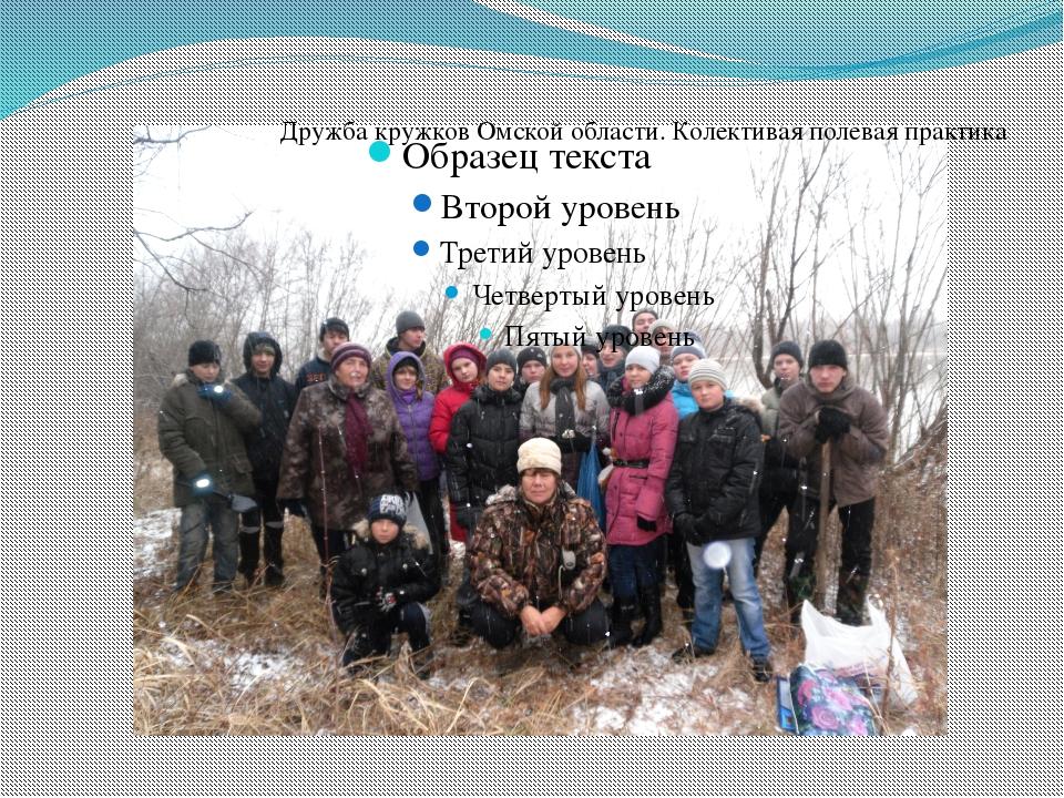 Дружба кружков Омской области. Колективая полевая практика
