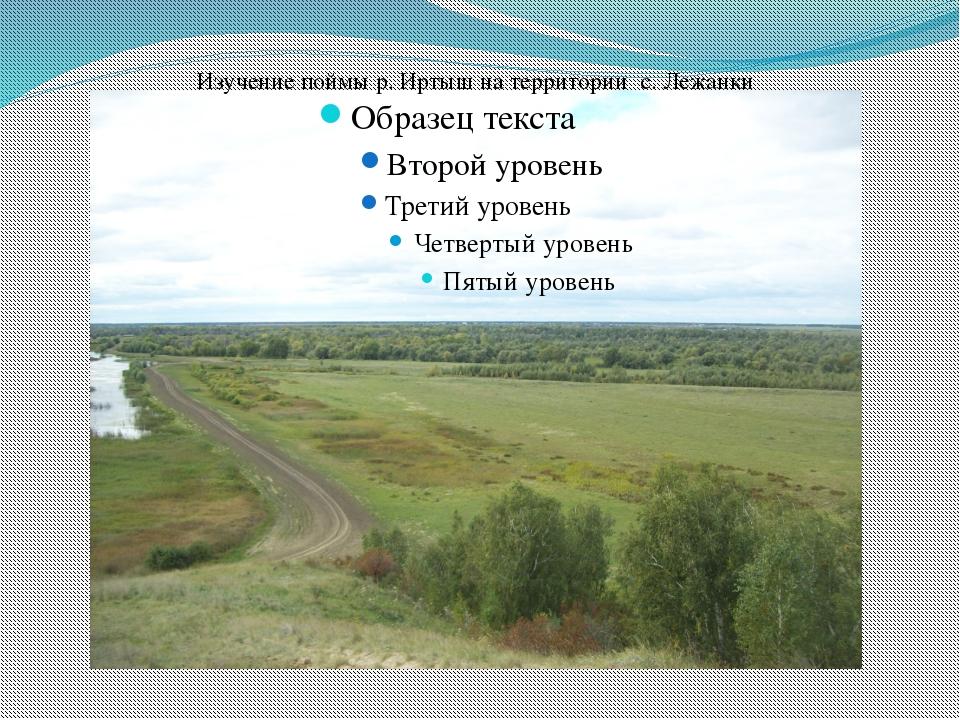 Изучение поймы р. Иртыш на территории с. Лежанки