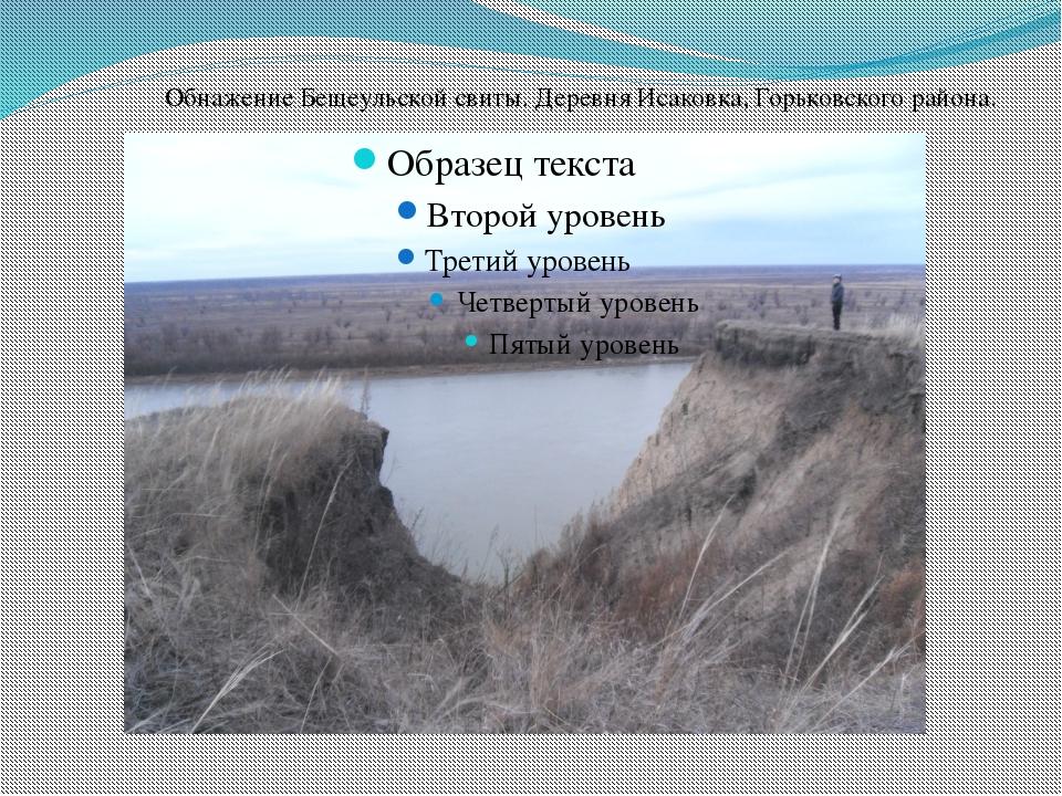 Обнажение Бещеульской свиты. Деревня Исаковка, Горьковского района.