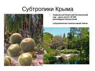 Субтропики Крыма Знаменитый Никитский ботанический сад – здесь растёт 30 000