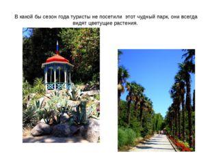 В какой бы сезон года туристы не посетили этот чудный парк, они всегда видят
