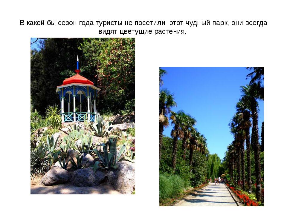 В какой бы сезон года туристы не посетили этот чудный парк, они всегда видят...