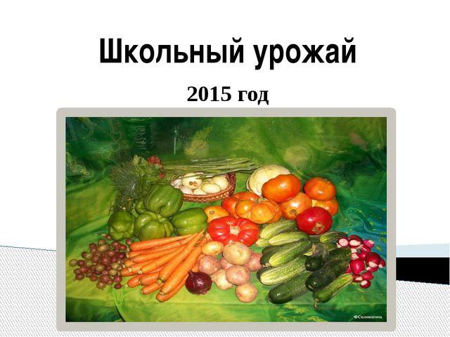 Школьный урожай 2015 год
