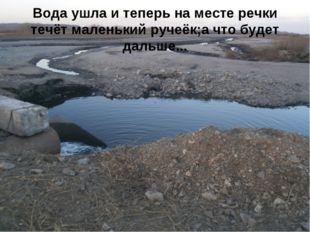 Вода ушла и теперь на месте речки течёт маленький ручеёк;а что будет дальше...