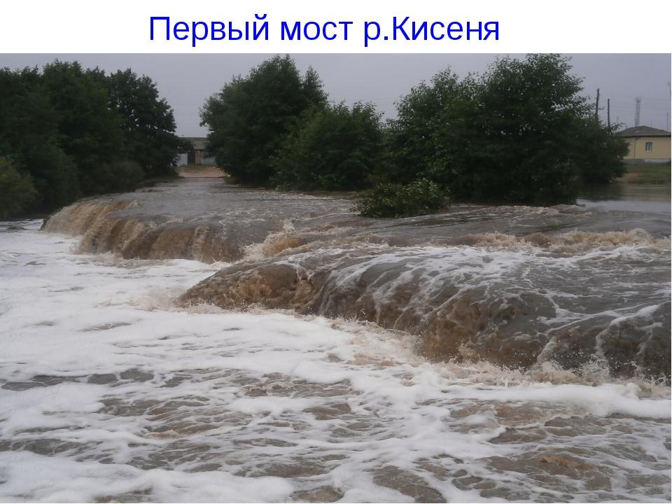 Первый мост р.Кисеня