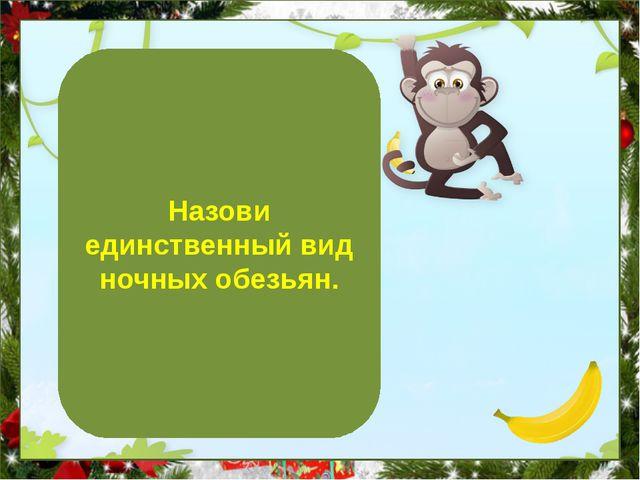 Дурукули Назови единственный вид ночных обезьян.