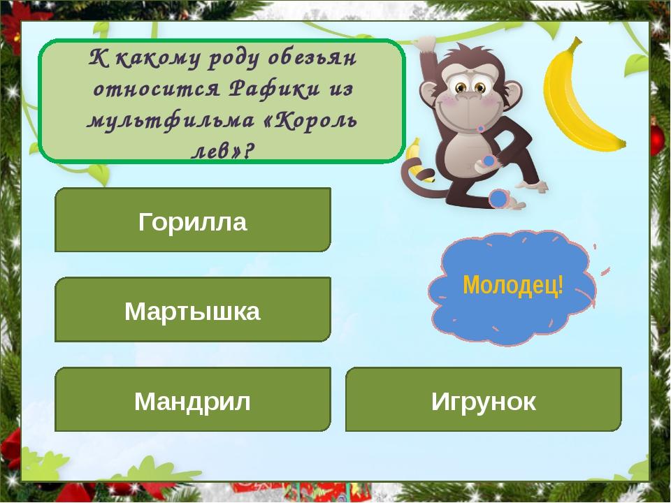 К какому роду обезьян относится Рафики из мультфильма «Король лев»? Горилла...