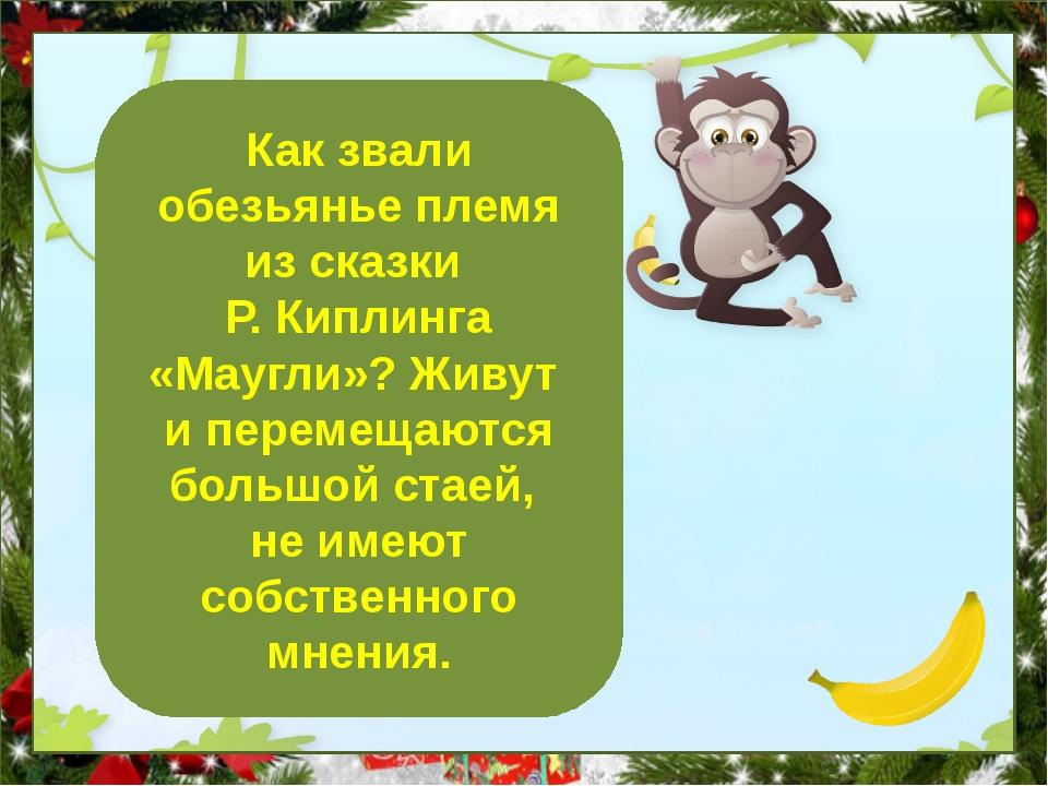 Бандерлоги Как звали обезьянье племя из сказки Р. Киплинга «Маугли»? Живут и...