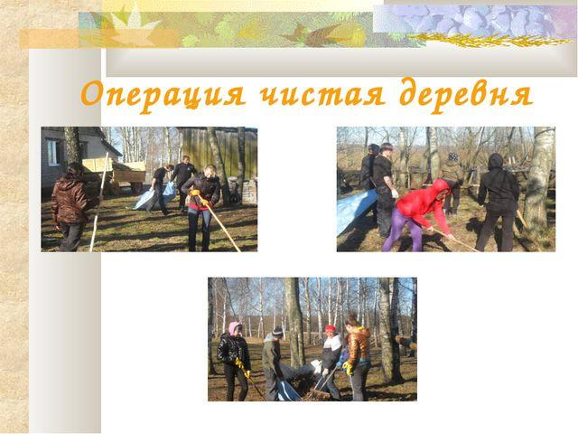 Операция чистая деревня