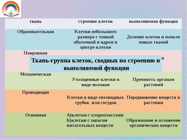 Ткань-группа клеток, сходных по строению и выполняемой функции ткань строение...