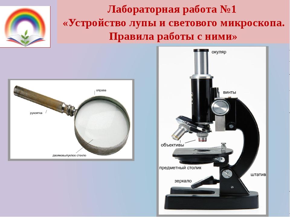 Лабораторная работа №1 «Устройство лупы и светового микроскопа. Правила работ...