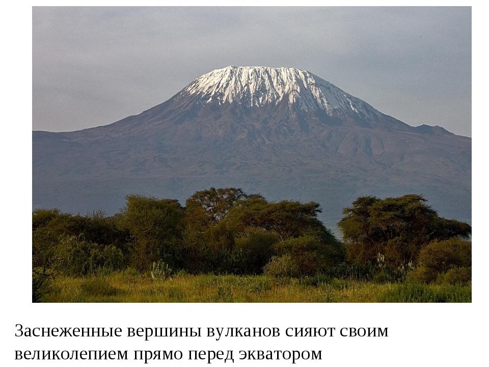Заснеженные вершины вулканов сияют своим великолепием прямо перед экватором