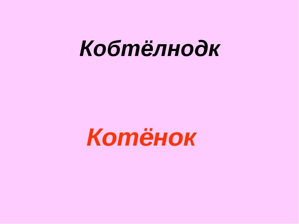 Кобтёлнодк Котёнок