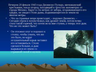 Вечером 20 феваля 1943 года Дионисио Пулидо, мичоаканский крестьянин, пахал