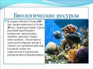 Биологические ресурсы В океане обитают более 160 тыс. видов животных и более