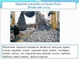 Мировой улов рыбы составляет более 90 млн тонн в год Объектами морского пром