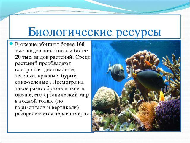 Биологические ресурсы В океане обитают более 160 тыс. видов животных и более...