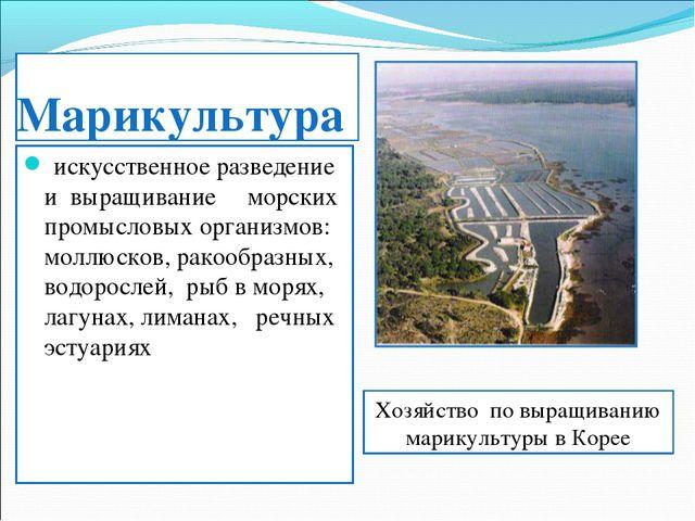 Марикультура искусственное разведение и выращивание морских промысловых орган...