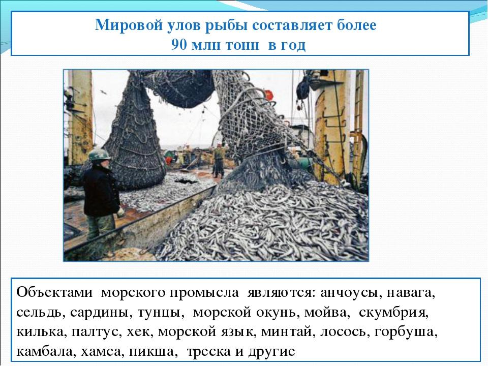 Мировой улов рыбы составляет более 90 млн тонн в год Объектами морского пром...