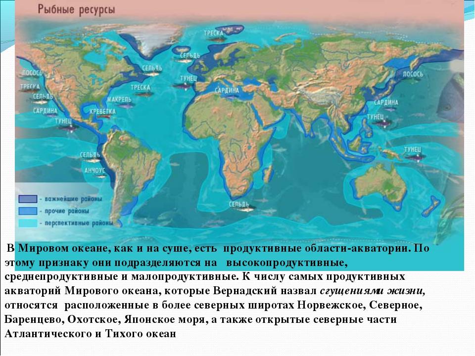 В Мировом океане, как и на суше, есть продуктивные области-акватории. По это...