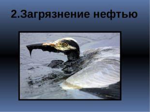 2.Загрязнение нефтью
