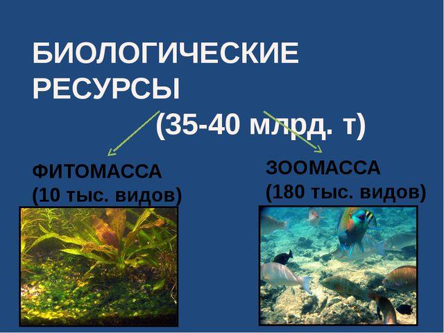 БИОЛОГИЧЕСКИЕ РЕСУРСЫ (35-40 млрд. т) ФИТОМАССА (10 тыс. видов) ЗООМАССА (180...