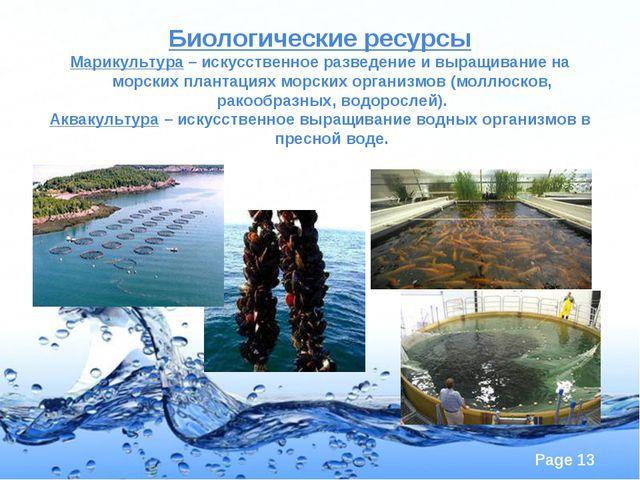 Биологические ресурсы Марикультура – искусственное разведение и выращивание н...