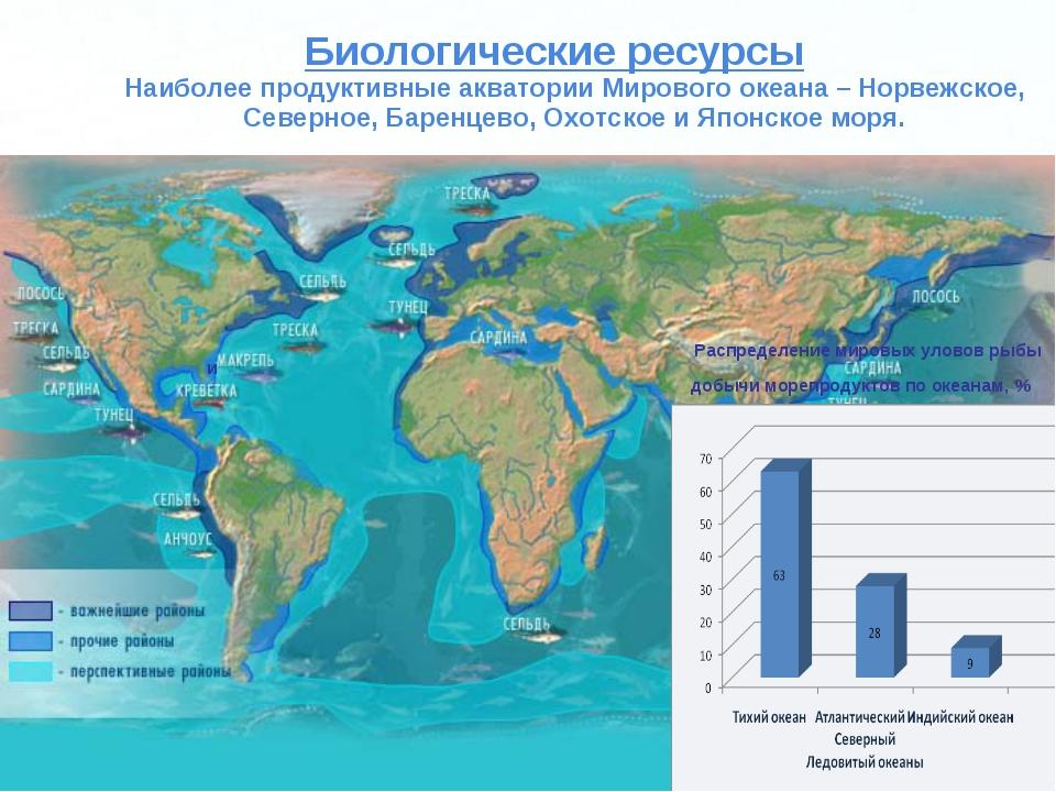 главный рыболов европы использует геотермальную энергию