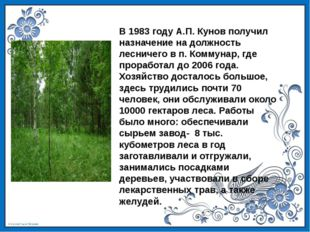 В 1983 году А.П. Кунов получил назначение на должность лесничего в п. Коммуна