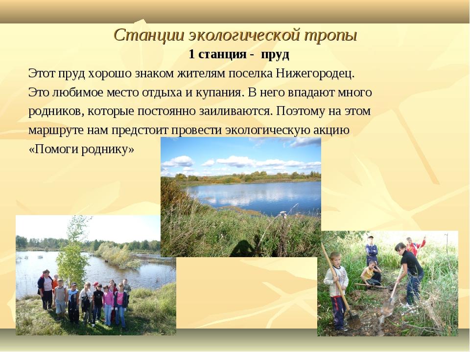 Станции экологической тропы 1 станция - пруд Этот пруд хорошо знаком жителям...