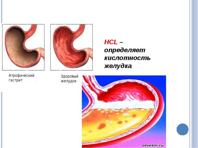 HCL – определяет кислотность желудка.