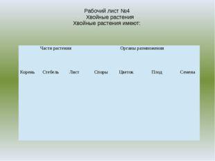 Рабочий лист №4 Хвойные растения Хвойные растения имеют: Части растения Орган