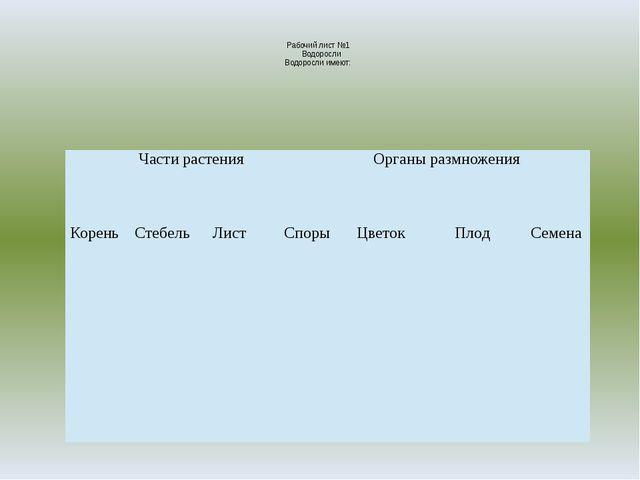 Рабочий лист №1 Водоросли Водоросли имеют: Части растения Органы размножения...