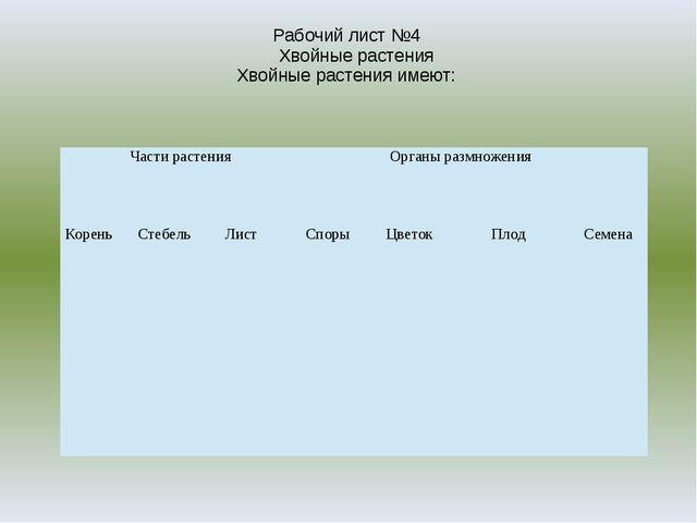 Рабочий лист №4 Хвойные растения Хвойные растения имеют: Части растения Орган...