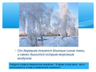 От деревьев ложатся длинные синие тени, и свежо дышится острым морозным возду
