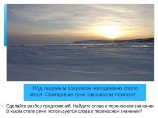 Под ледяным покровом неподвижно спало море. Свинцовые тучи закрывали горизон