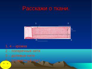 Расскажи о ткани. 1 2 5 4 3 1, 4 – кромка 2 – поперечные нити 3 – долевые нит