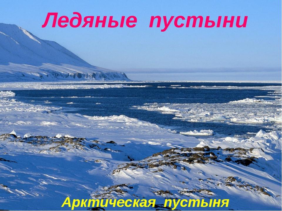 Арктическая пустыня Ледяные пустыни