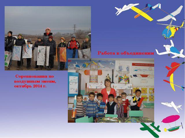 Соревнования по воздушным змеям, октябрь 2014 г. Работа в объединении