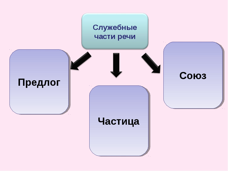 Предлог Союз Частица