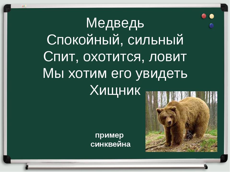 Медведь Спокойный, сильный Спит, охотится, ловит Мы хотим его увидеть Хищник...
