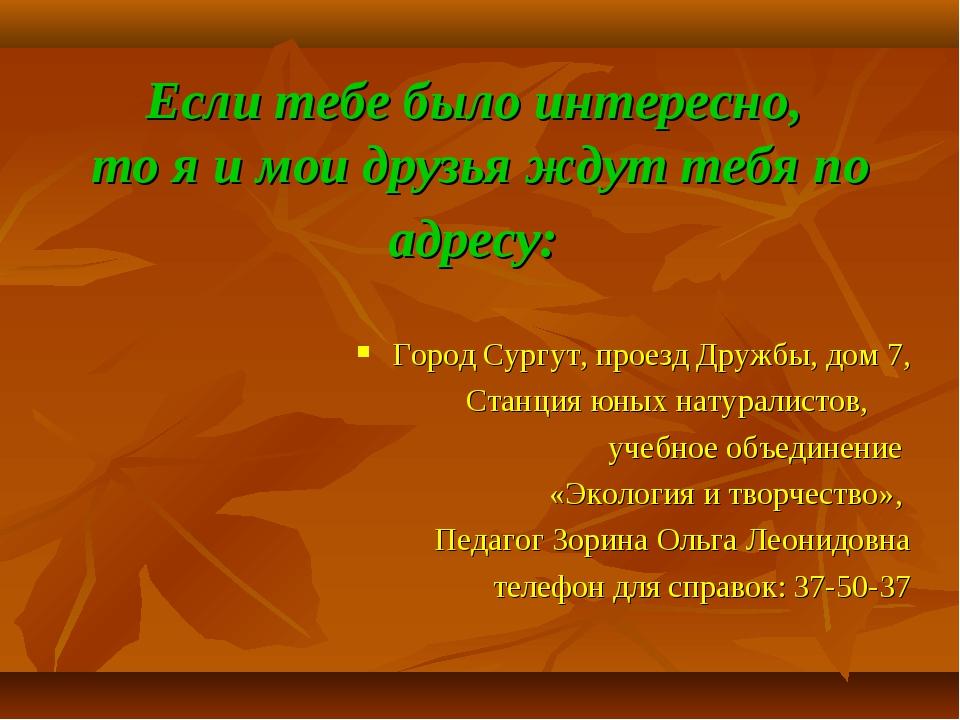 Если тебе было интересно, то я и мои друзья ждут тебя по адресу: Город Сургут...