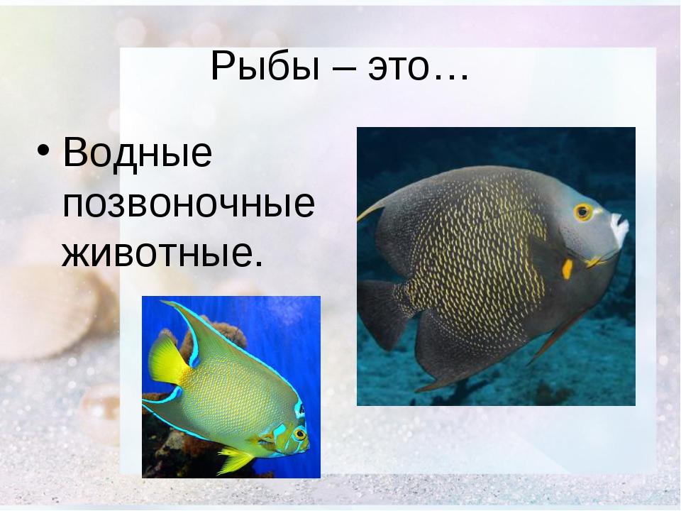 Рыбы – это… Водные позвоночные животные.
